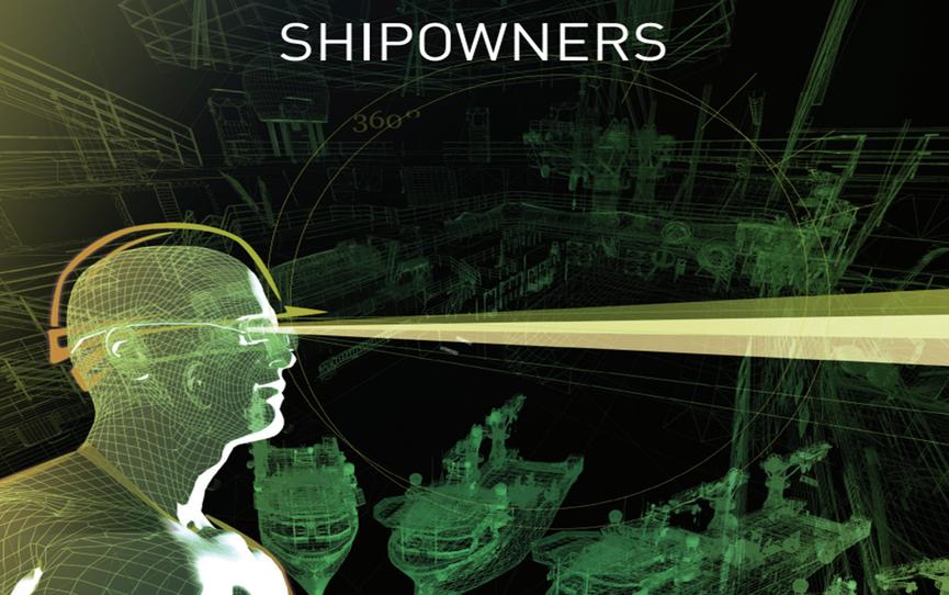 metizoft-shipowner